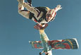 SKYDIVES-closing-in-on-Ralph-over-Madera-California